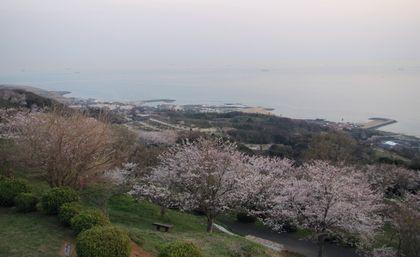shigatu1.JPG